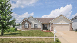 Photo of 711 Wenstone Crossing, Wentzville, MO 63385-3196 (MLS # 18046242)