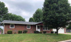 Photo of 1005 Lincoln Drive, Maryville, IL 62062 (MLS # 18046952)