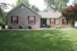Photo of 218 Burns Farm Boulevard, Edwardsville, IL 62025 (MLS # 18047274)
