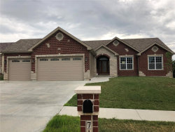 Photo of 716 Chancellorsville Drive, Wentzville, MO 63385-3992 (MLS # 18048071)