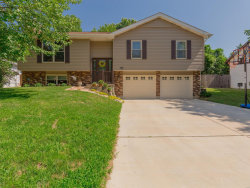 Photo of 52 Crescent Hills Drive, St Peters, MO 63376-4403 (MLS # 18048459)