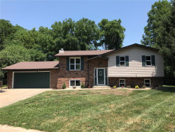 Photo of 223 Glenwood, Glen Carbon, IL 62034-1015 (MLS # 18048952)