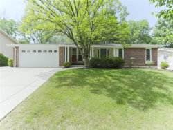 Photo of 1138 Villaview, Manchester, MO 63021-6754 (MLS # 18049423)