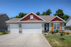 Photo of 219 Limerick Avenue, Wentzville, MO 63385-3263 (MLS # 18049434)