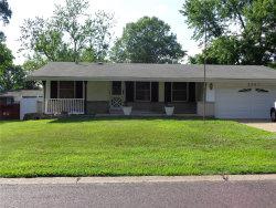 Photo of 2367 Vorhof, St Louis, MO 63136-5727 (MLS # 18050904)