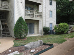 Photo of 1205 Mangrove Lane , Unit 2, St Louis, MO 63125-5631 (MLS # 18054063)