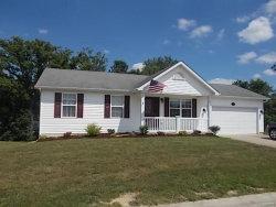 Photo of 245 Conrad Circle, Warrenton, MO 63383 (MLS # 18054715)