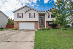 Photo of 929 Carla Dr, Troy, IL 62294 (MLS # 18059253)