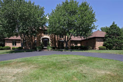 Photo of 2410 Wexford Woods Court, Town and Country, MO 63131-1139 (MLS # 18060530)