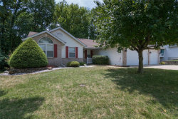 Photo of 108 Fairington Drive, Troy, IL 62294-2245 (MLS # 18062695)