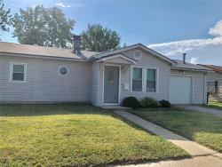 Photo of 2813 Birch Avenue, Granite City, IL 62040 (MLS # 18063753)