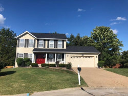 Photo of 202 Sunshine Dr., O'Fallon, MO 63368-6896 (MLS # 18063948)