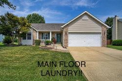 Photo of 2717 Falcon Crest Drive, Edwardsville, IL 62025-3041 (MLS # 18066882)