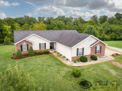 Photo of 31542 Palmyra, Warrenton, MO 63383-4572 (MLS # 18071112)