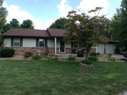 Photo of 908 Harvestyme Lane, Troy, IL 62294-3116 (MLS # 18075095)