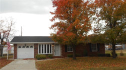 Photo of 140 Hickory Street, Wood River, IL 62095 (MLS # 18077080)