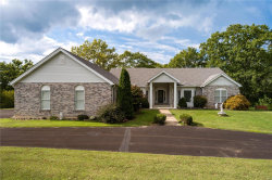 Photo of 8337 Old Lemay Ferry Road, Barnhart, MO 63012-2149 (MLS # 18077350)
