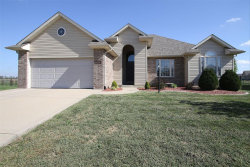 Photo of 528 Patton Drive, Troy, IL 62294 (MLS # 18080169)