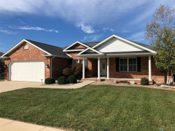 Photo of 35 Warbler Drive, Highland, IL 62249-2976 (MLS # 18083045)