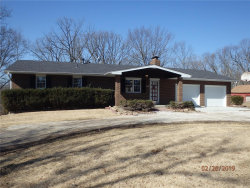 Photo of 371 South Ridge Road, Troy, MO 63379-6347 (MLS # 18083346)