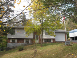 Photo of 5963 Lakeview Drive, House Springs, MO 63051-1431 (MLS # 18087416)