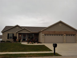 Photo of 249 Gabrielle Circle, Bethalto, IL 62010 (MLS # 18089249)