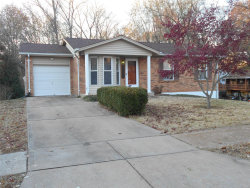 Photo of 1251 Marchi Drive, St Louis, MO 63125-2422 (MLS # 18089982)