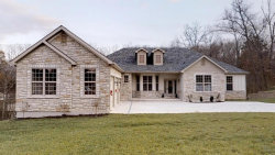 Photo of 1105 Highgate Drive, Festus, MO 63028 (MLS # 18091347)