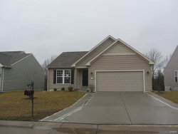 Photo of 6471 Buckingham Palace Drive, Imperial, MO 63052-3826 (MLS # 18091677)