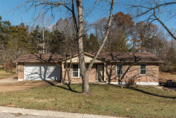 Photo of 109 Hickory Hill Drive, Eureka, MO 63025-2152 (MLS # 18092012)