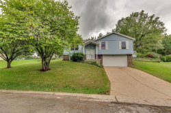 Photo of 1812 Whitehorne Place, Imperial, MO 63052-3029 (MLS # 18092458)