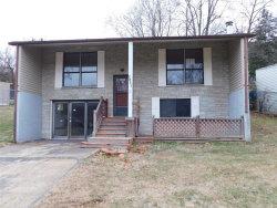Photo of 2841 Paula Lane, High Ridge, MO 63049 (MLS # 18092539)