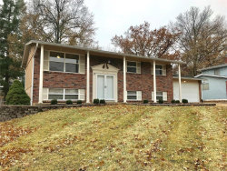 Photo of 1212 Miremont Drive, Manchester, MO 63011-4320 (MLS # 18092546)
