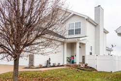 Photo of 168 Autumn Oaks Drive, Troy, MO 63379 (MLS # 18092775)