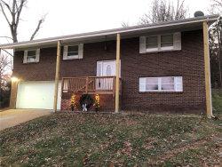 Photo of 2109 Brenda Lane, High Ridge, MO 63049-1608 (MLS # 18093927)