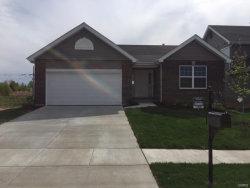 Photo of 2741 Cedar Grove, Belleville, IL 62221-7411 (MLS # 18094007)