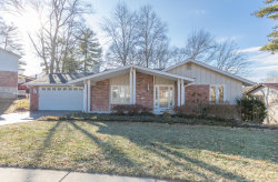 Photo of 23 Leaside Court, Manchester, MO 63011-4029 (MLS # 18094045)