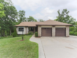Photo of 10248 Lake Ridge Drive, Hillsboro, MO 63050-5422 (MLS # 18094229)