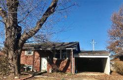 Photo of 78 Cambridge Drive, Granite City, IL 62040 (MLS # 18094441)