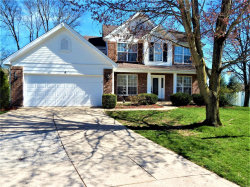 Photo of 4 Sidesaddle Court, Imperial, MO 63052-4002 (MLS # 18095046)