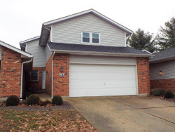 Photo of 107 Treeridge Drive, Columbia, IL 62236-2550 (MLS # 18096214)