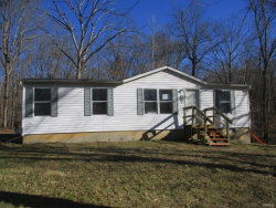 Photo of 4109 Lakeview Drive, Hillsboro, MO 63050-2051 (MLS # 19000500)