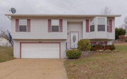Photo of 3541 Lancaster, Imperial, MO 63052-1489 (MLS # 19002100)