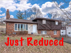 Photo of 510 Reese Drive, Collinsville, IL 62234 (MLS # 19002498)