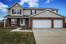 Photo of 1419 Dale Drive, Troy, IL 62294-3615 (MLS # 19003022)