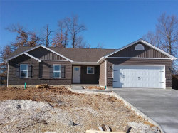 Photo of 81 Hollyhock Drive, Troy, MO 63379-3366 (MLS # 19003796)