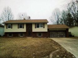Photo of 923 Albers Lane, Bethalto, IL 62010-1163 (MLS # 19004762)