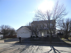 Photo of 424 Bluffview Heights, Arnold, MO 63010-1453 (MLS # 19005552)