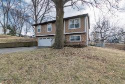 Photo of 116 Birger Avenue, Glen Carbon, IL 62034-1427 (MLS # 19005608)