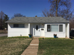 Photo of 9437 Everman Avenue, St Louis, MO 63114 (MLS # 19005875)
